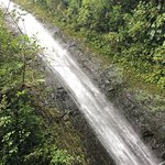 Photo de Manoa Falls
