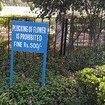 warning board at rose garden