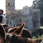 "Savoca il sentiero dell'asino ""The godfather donkeys tour """