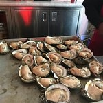 Raw oysters freshly shucked at the oysster bar