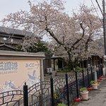 Photo de Mikunicho