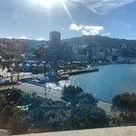 View of Wellington from the rooftop terrace