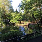 An all event park : little boats, walking paths, zoo and a shinto shrine.
