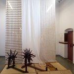 hand loom machines