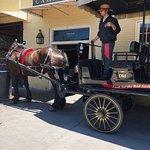 Bild från Old South Carriage Company