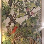 Sallie Middleton print in Simons room