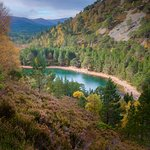 The Green Loch, Near Aviemore