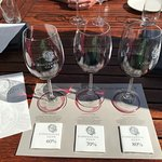 Wine tasting with chocolate pairing