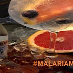 #malariamustdie No better excuse for a gin & tonic!😍