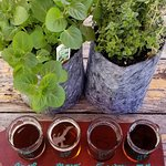 A couple of fun activities, Succs & Sudds and Herb's the Word and beer!