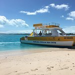 Caicos Dream Tours Foto