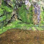 Photo of Blarney Castle & Gardens
