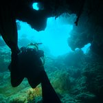 Bild från Tieti Diving