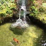 Foto de Mobile Botanical Gardens
