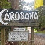 Carobana Confectionary照片