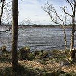Photo de Portumna Forest Park