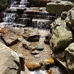 Dallas Arboretum & Botanischer Garten Foto