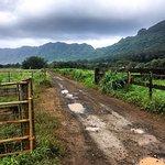 Kipu Ranch Adventures