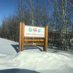 Photo of Yukon Wildlife Preserve