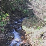 Ecola State Park resmi