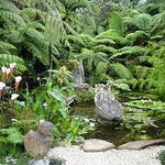 Helena Bay Cafe Sculpture Garden