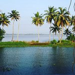 The View Around the Backwaters