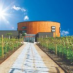 Billede af Nordic Sea Winery