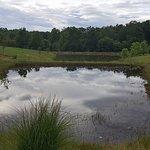 Stocked fishing ponds