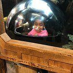 My Daighter in the fish tank