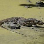 Photo de Mu Koh Lanta National Park