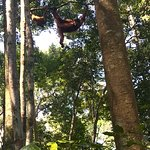 Photo of Bukit Lawang Jungle Trekking Tours - Day Tours