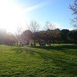 Parque de Yamaguchi