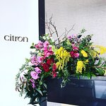 We look forward to your visit to Citron, and offer complimentary valet when you arrive.