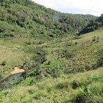 Horton Plains National Park의 사진