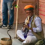Snake Charmer Outside Palace of the Wind