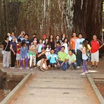 Tours of Redwood National Park  The Kingdom of the Giant Redwoods
