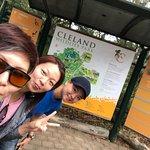 Foto de Cleland Wildlife Park
