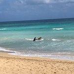 Macao Surf Camp resmi