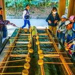 Meiji Jingu Shrine Complex