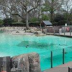 Foto de ZSL London Zoo