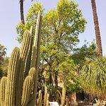 Photo of Jardi Botanic de Soller