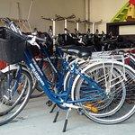 Les vélos au couleur du motel!!