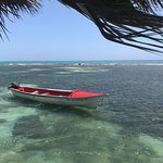 Photo de Floyd's Pelican Bar
