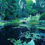 Photo of Royal Tasmanian Botanical Gardens