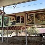 Foto de Museo de sitio Huaca Rajada - Sipan