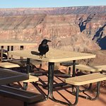 Photo of Grand Canyon Skywalk