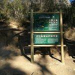 Start of Lion's Head hike