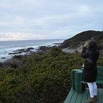 Ocean Haven Photo