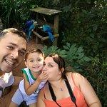 Photo of Parque das Aves