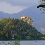 Photo of Bled Castle (Blejski Grad)